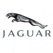 Blende za Jaguar